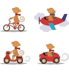 Set - cute monkey with scarf on transport vector