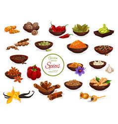 Spice poster with set of condiment and seasoning vector