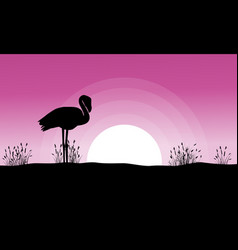 flamingo at sunset landscape silhouettes vector image vector image