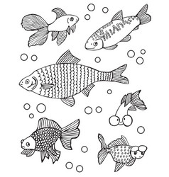aquarium fish and other vector image