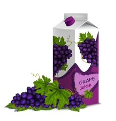 Juice pack grape vector image