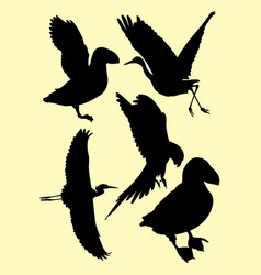 limpkin birds stork heron puffin ostrich vector image