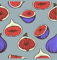 seamless pattern of figs hand drawn vector image