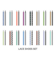 shoelaces modern colored pairs collection vector image