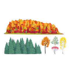 Simple autumn forest fragments and trees vector