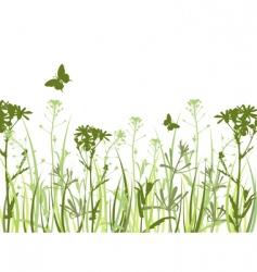 wild flowers and butterflies vector image