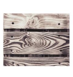 wooden texture color wood grain background vector image