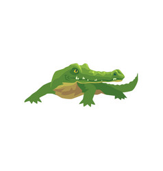 crocodile amphibian animal cartoon vector image vector image