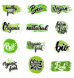 set of hand drawn emblems eco food organic food vector image