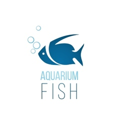 Aquarium fish logo template vector image