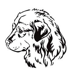 Decorative portrait caucasian shepherd dog vector