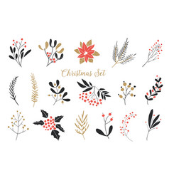 elegant christmas graphic set set plants vector image
