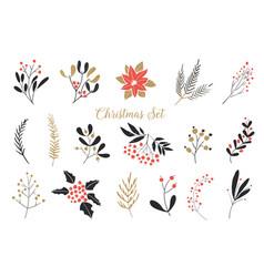Elegant christmas graphic set set plants vector
