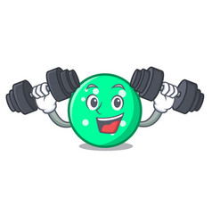 fitness circle character cartoon style vector image