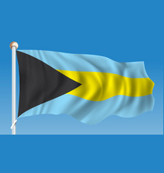 Flag of bahamas vector