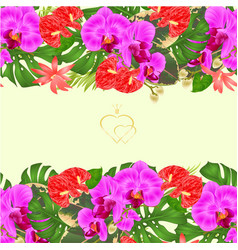 floral border seamless horizontal background vector image