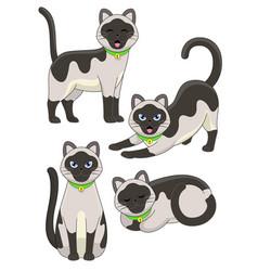 set cute siamese cat vector image