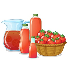 Tomatoes and its uses vector image
