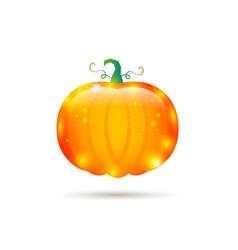 pumpkin glossy label vector image