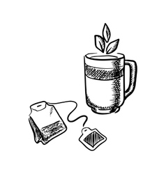 Cup of tea with teabag vector image