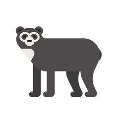 flat style of spectacled bear vector image vector image