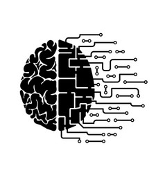 Human brain is abstract hemisphere vector