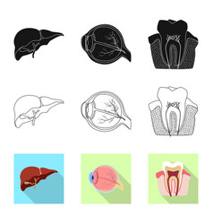 Isolated object of body and human symbol set of vector