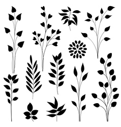 Leaf elements vector