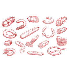 Sausages and meat products sketch set vector
