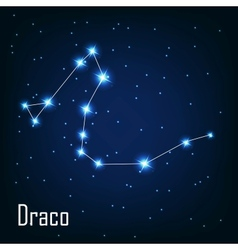 The constellation Draco star in the night sky vector
