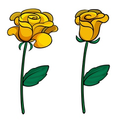 Two lovely flowers vector