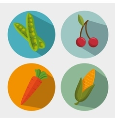 healthy vegetables and fruit design vector image vector image