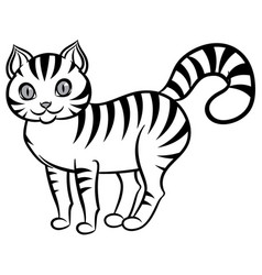 isolated black and white stripped cat vector image