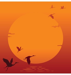 Sunset with flying bird vector image
