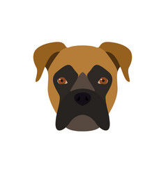 boxer is a dog image vector image