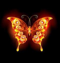 fire butterfly peacock vector image