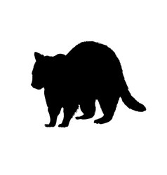 raccoon silhouette black white icon vector image