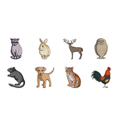 Realistic animals icons in set collection for vector