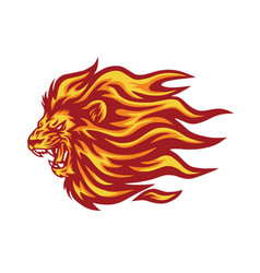 roaring lion flaming fire logo vector image