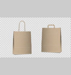 shopping empty bags isolated two different blank vector image