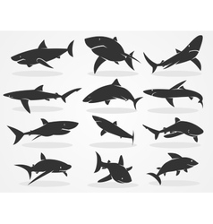 Silhouette shark set vector