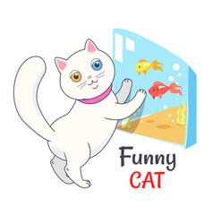 funny white cat looking aquarium with fish vector image