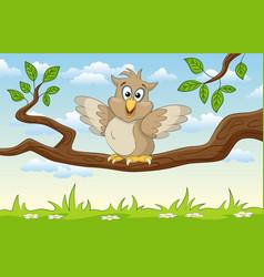 an cartoon owl on a branch vector image