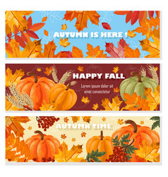 autumn banners set fall leaves and pumpkin vector image