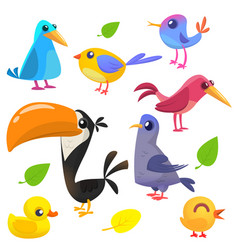 cute cartoon birds collection vector image