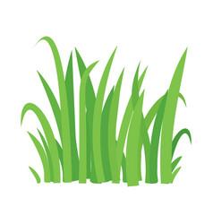 grass cartoon texture grass field shape vector image