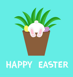 happy easter flower pot with bunny rabbit bottom vector image