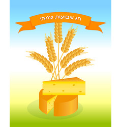 Jewish holiday of shavuot cheese and ears wheat vector