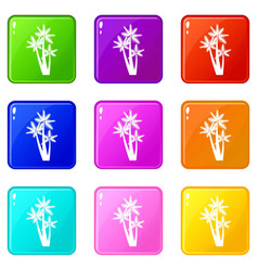 Three tropical palm trees icons 9 set vector