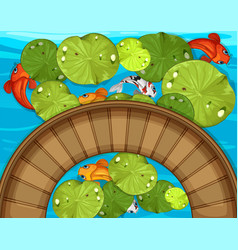 Top view of fish and waterlily in the pond vector